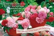 Faltkarte: Alles Liebe Gottes Segen zum Geburtstag - Geburtstag